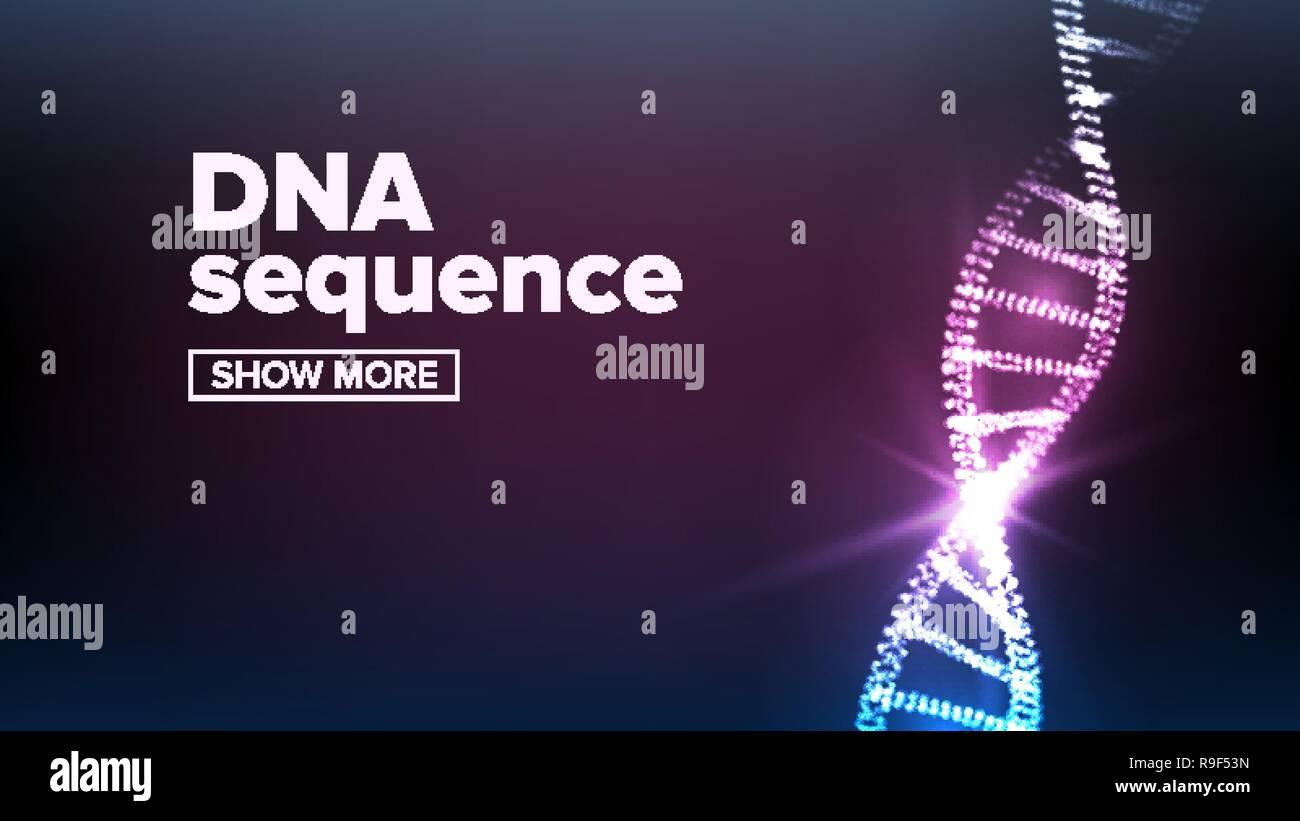 La Estructura Del Adn Vector Genoma Humano Molécula