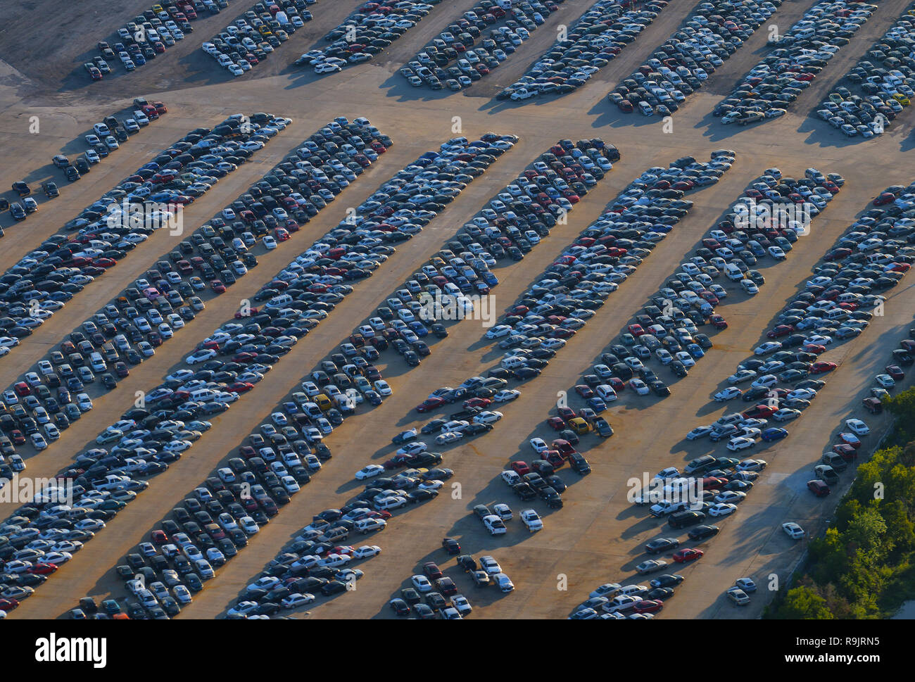 Incautaron Automóviles Imagen De Stock