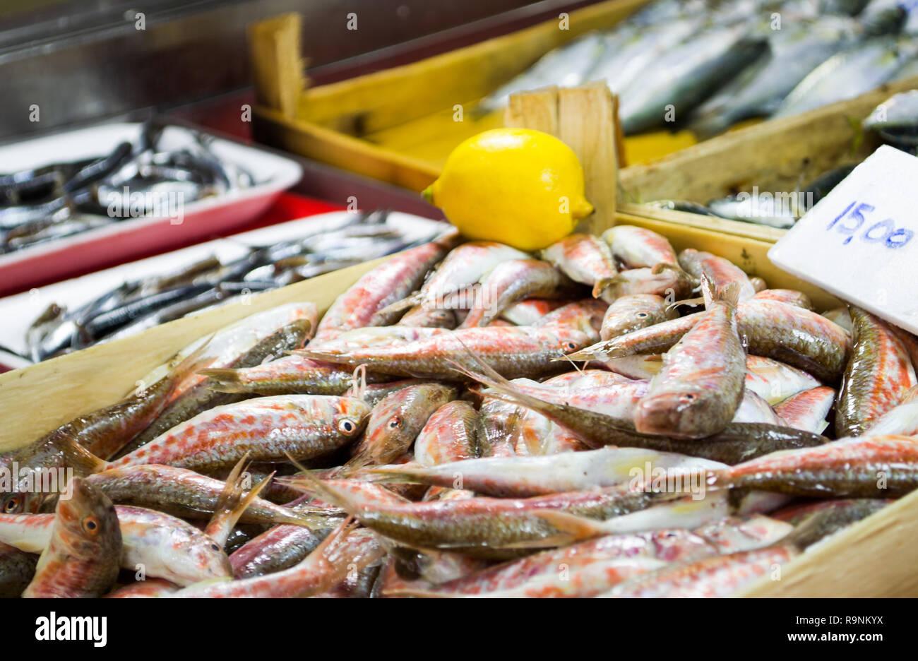 Salmonete fresco a la venta en el mercado de pescado Foto de stock