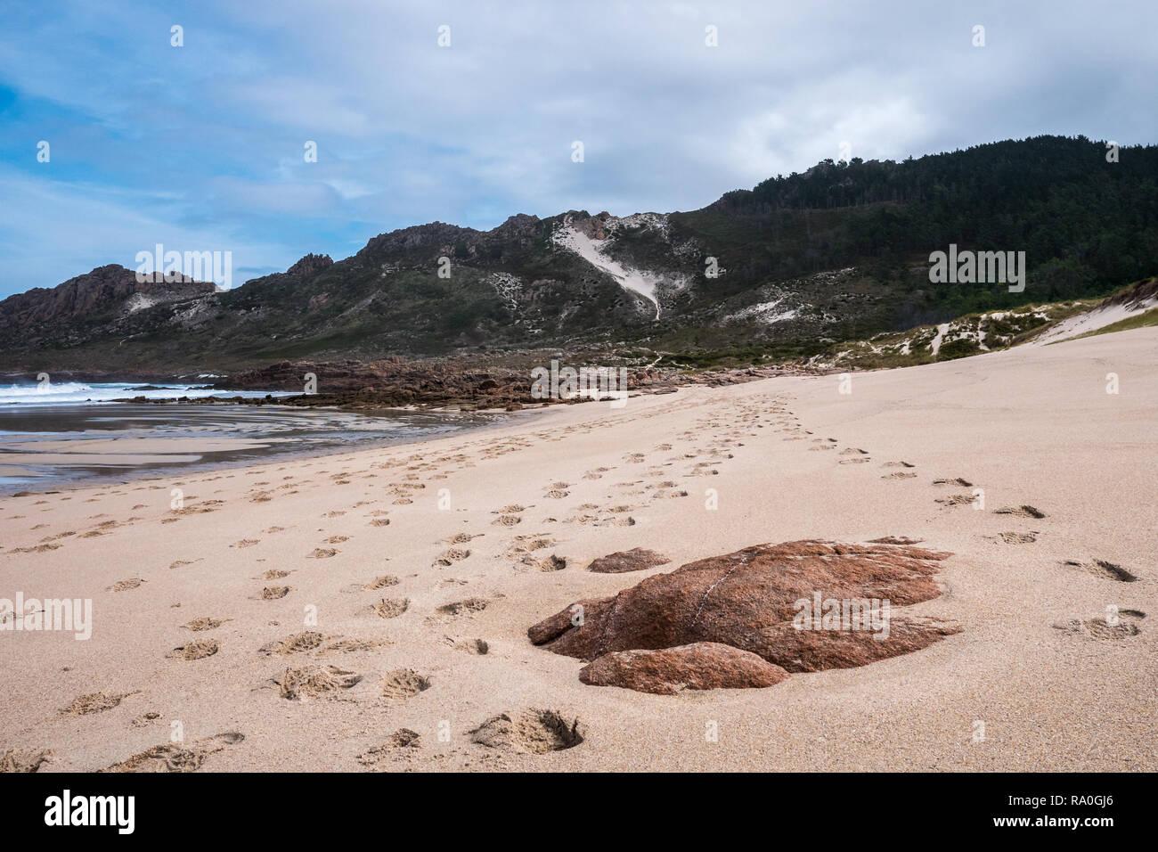 Pasos a lo largo de la playa de Praia do trece sobre el Faro Hiking Trail cerca Camarinas, Galicia, España Imagen De Stock