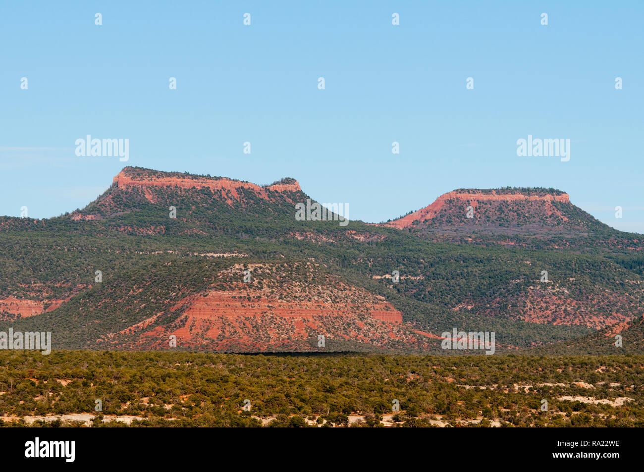 Tiene orejas de osos oídos Monumento Nacional en el condado de San Juan en el sureste de Utah, EE.UU. Imagen De Stock