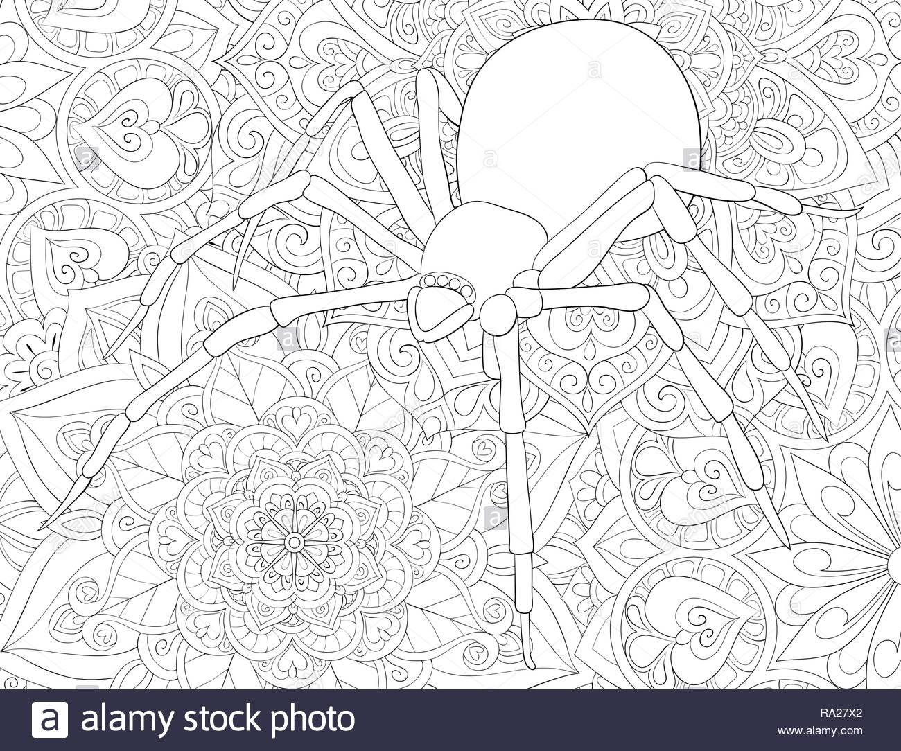 Un Mono Araña En La Imagen De Fondo Abstracto Para Actividad