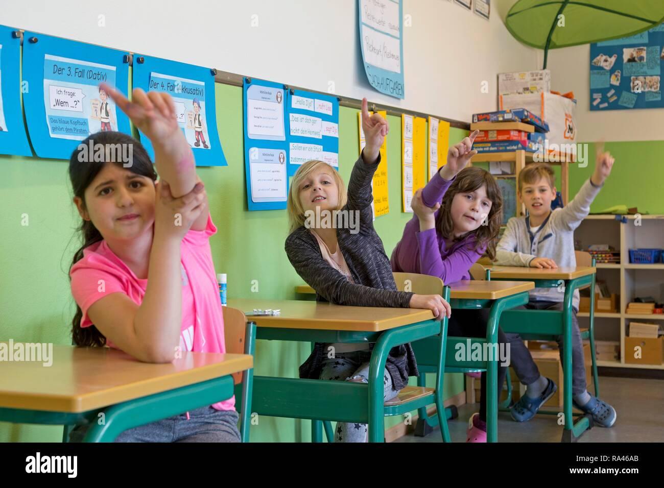 Los estudiantes levantando la mano en el aula, escuela primaria, Baja Sajonia, Alemania Imagen De Stock