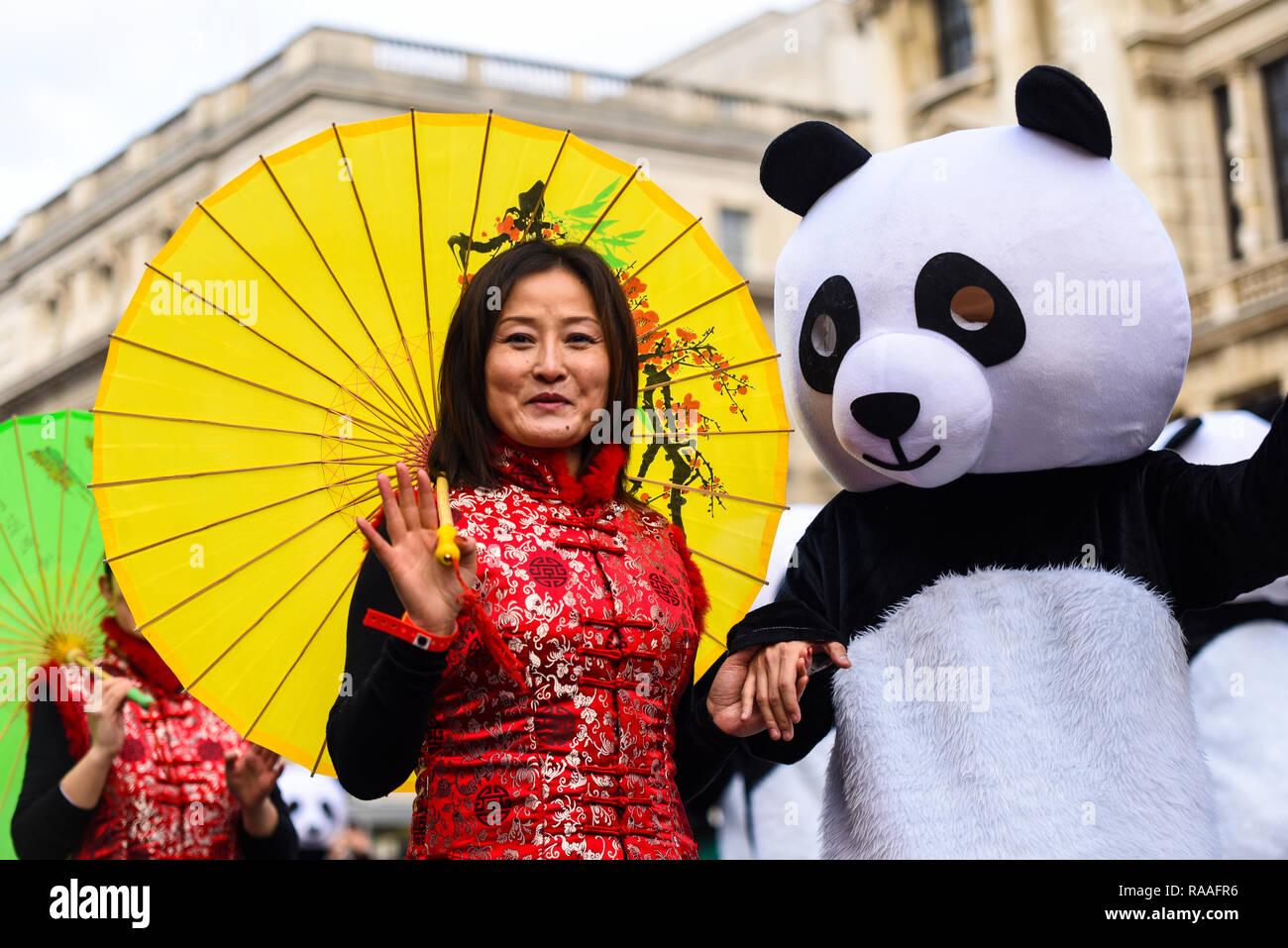 Asociación chino Chinatown de Londres, Reino Unido, en Londres el día de Año Nuevo de Parade, Reino Unido. Chino y panda traje femenino Imagen De Stock