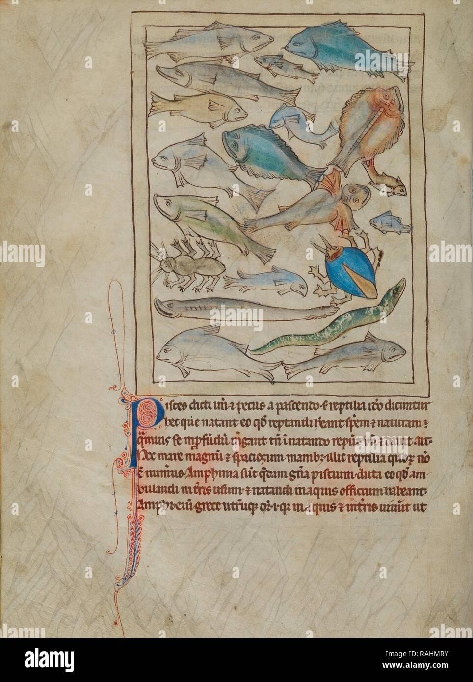 Los Peces Y Los Monstruos Del Mar Inglaterra Alrededor De 1250