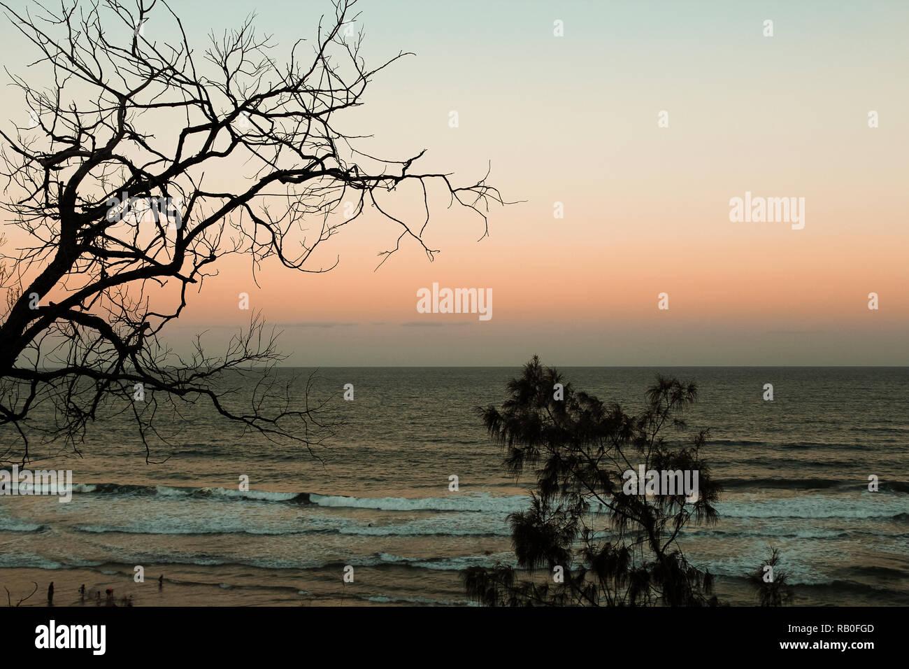 Vista de una típica playa australiana - Coolum Beach, durante la puesta de sol con árboles de naranja y cielo sin nubes (Sunshine Coast, Queensland, Australia) Imagen De Stock