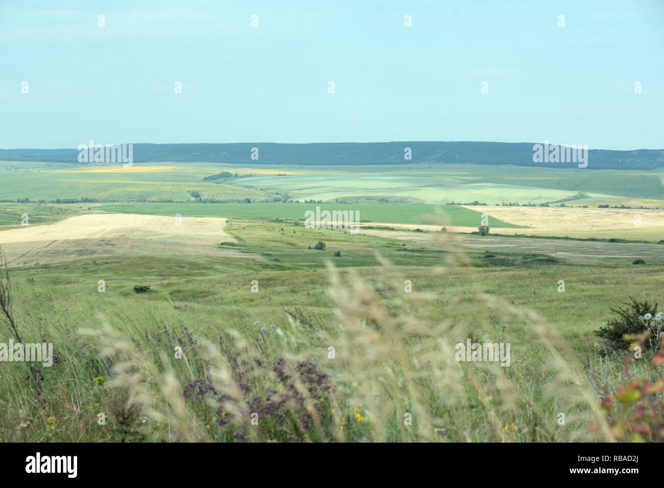 Campo con coloridos cerros y un cielo azul sin nubes Imagen De Stock