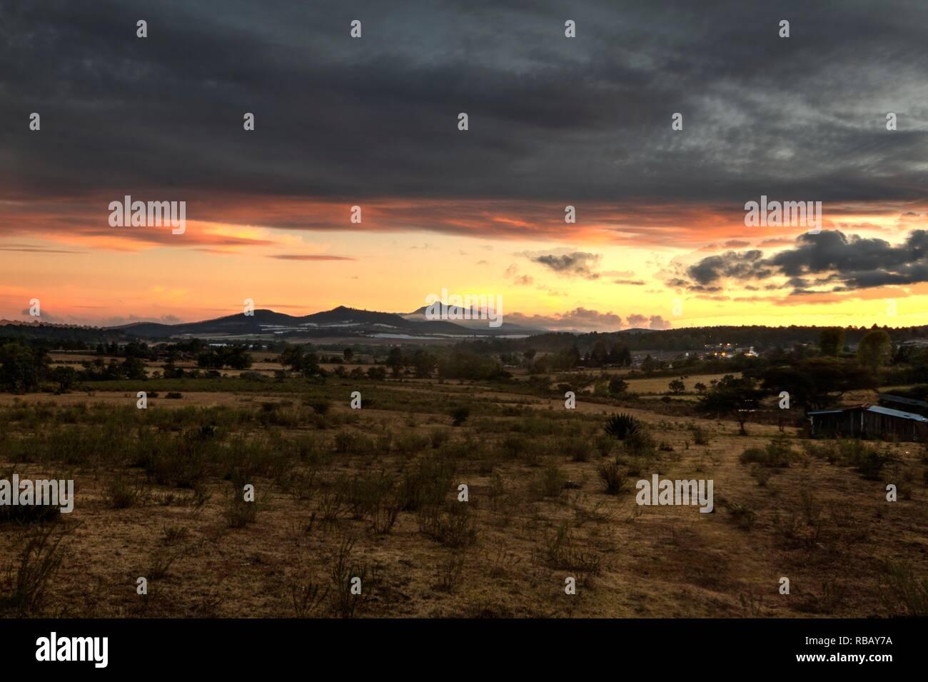 La naturaleza y la vida silvestre fotografías tomadas durante diferentes excursiones y lugares de México Imagen De Stock
