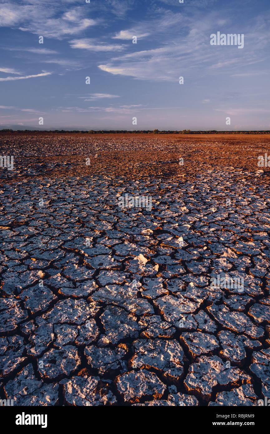 Baldosas de barro llenar la superficie del desierto de Sarigua en Panamá Foto de stock