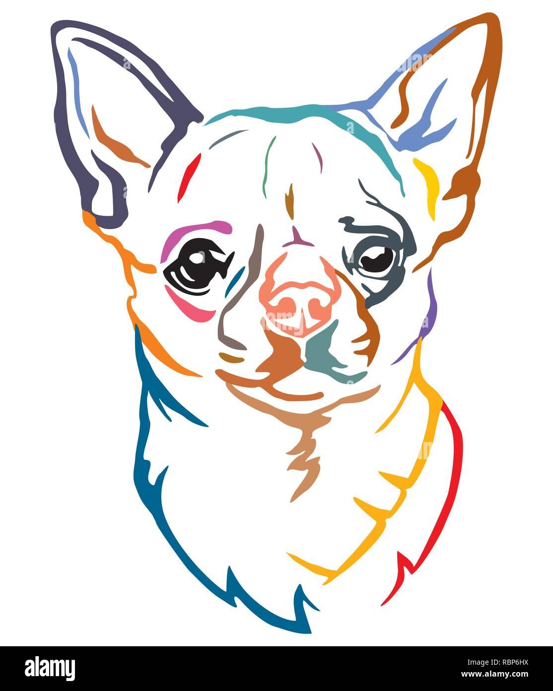 Vectores De Chihuahua Vector Imágenes De Stock Vectores De