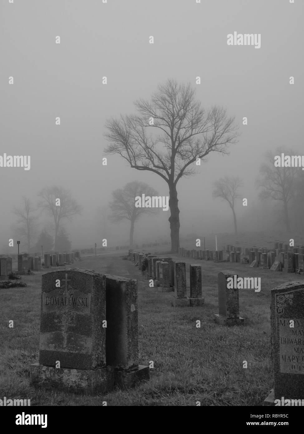 María resto Cementerio de Mahwah, New Jersey en una sombría escena con niebla. Foto de stock