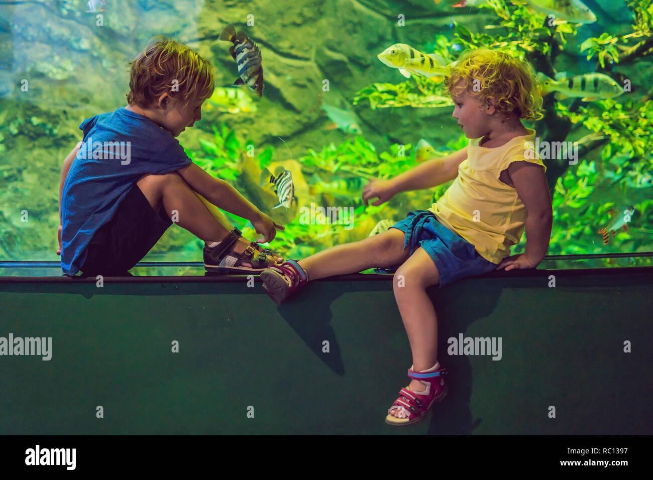 Chico y chica viendo peces de coral tropical en gran depósito de vida marina. Los chicos en el Zoo Aquarium Foto de stock