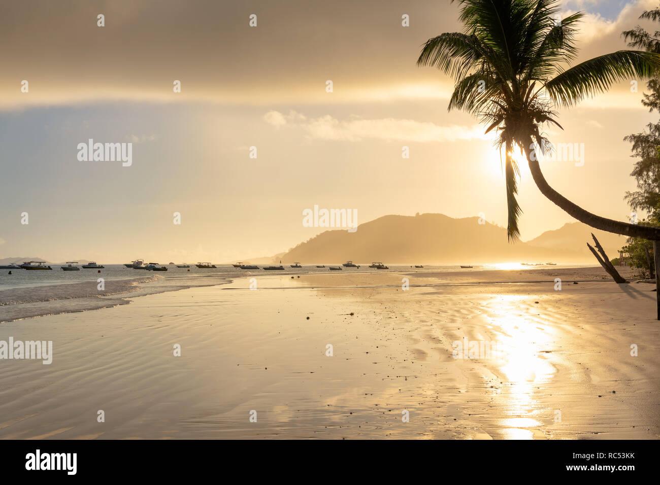Hermoso amanecer sobre la playa tropical de la isla caribeña. Foto de stock