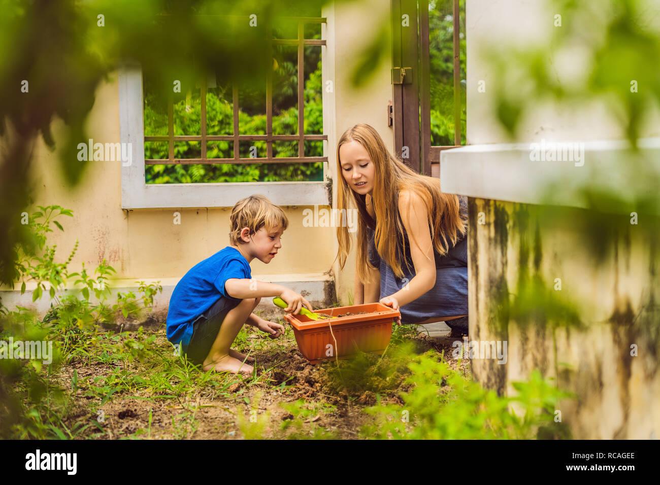 Hermosa joven y su lindo hijo sembrando plántulas en cama en el jardín interno en el día de verano. Herramientas de jardinería, guantes y regadera al aire libre. Actividad de jardinería con chico y familia Foto de stock