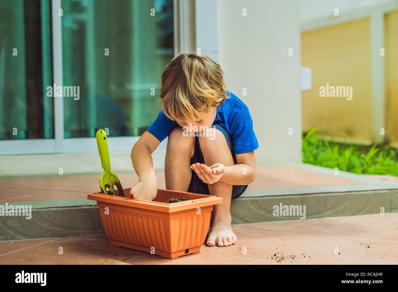 Poco chico lindo siembra semillas en una olla de la flor en el jardín Foto de stock