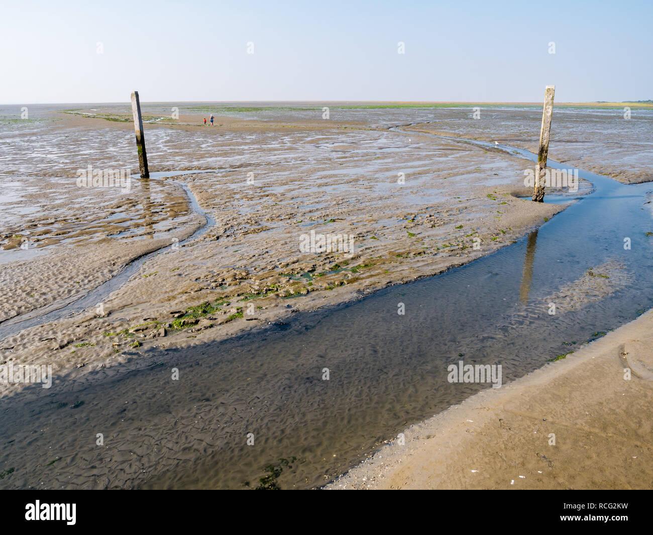 La gente caminando en pisos de lodo y tideway marcados con postes de madera en la marea baja del Mar de Wadden cerca de Schiermonnikoog, Holanda Foto de stock
