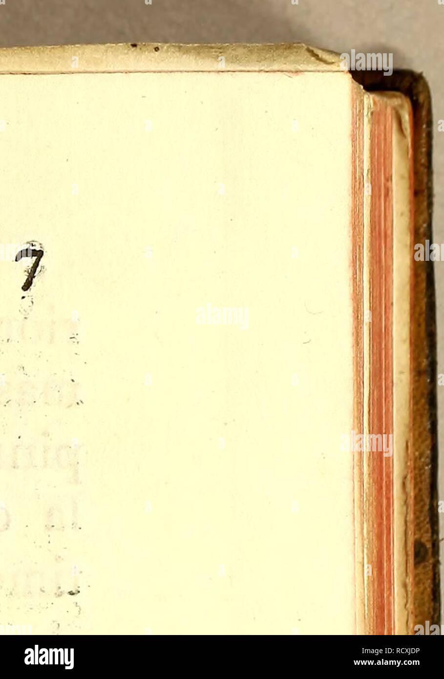 . Descripcion de diferentes piezas de historia natural las mas del ramo maritimo : representadas en setenta y cinco láminas. Animales marinos; historia natural. Lámina V. Figura i. GUATÍVERE. ¿JU tamaño es de anu tercia , su cabeza es puntiaguda , la mandíbula superior es mas corta que la inferior 5 tiene dos di- entes grandes uno de cada lado , y los demás en gran numero del tamaño de pun- tas de alfileres muy agudos : es la mandí- bula superior tiene sus labios tras de los que se hallan dos endiduras que penetran á la boca i luego siguen los ojos poco distantes uno de otro , colocados en la p Foto de stock