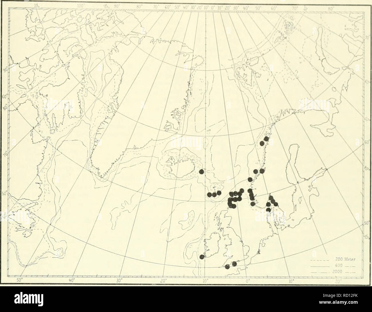 . Ingolf danés-expedición. Los animales marinos -- las regiones árticas; expediciones científicas; las regiones árticas. Yo IKI 11 estrictamente europeo, e il ,,| 00ndi1 βt|v ha resumido en .1 papei bj Beoi h (V Scalpellum scaVpellun el Mediterrai a lo largo de las costas de Spaii nd Pot B aunque datos detallados 1 (J0r hay anj partii desde Insli y British wat el 1 aarl fig 6), donde las especies, según la literatura, es más abundante. La nortl yo imitar de la especie a1 es el Lofoti presenl al n de las islas. Yo por Broch (1924), pero er 1 ser cha 1 dirigidas hacia arriba en 1 aal papel. inly be ch d como un típico atlántico, Foto de stock