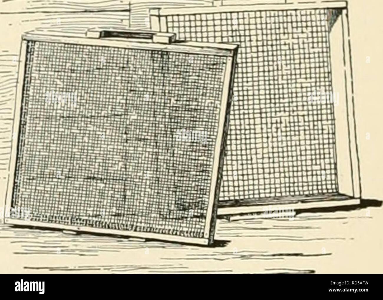 """. Cyclopedia of American horticultura, compuesto de sugerencias para el cultivo de plantas hortícolas, las descripciones de las especies de frutas, hortalizas, flores y plantas ornamentales vendidos en los Estados Unidos y Canadá, junto con los Esbozos Biográficos y geográficos. Jardinería. 1676 de las propiedades físicas del suelo en el suministro de agua, y los valores comerciales de muchos suelos dependen en gran medida npnn thic""""iiilifion ONP"""". Este es especialmente el caso cuando Willi til.- .arlv tni.k .ini,^. con el maíz, el trigo y la hierba hiri'N. :IimI -aiiIi ~ h, i;i  ,i-..conductos tales como el apio, cranliii 11' - Foto de stock"""