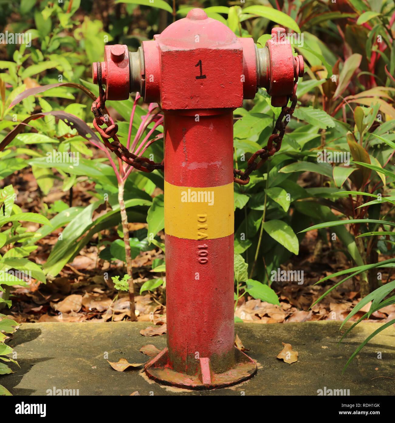 De color rojo con una banda amarilla de hidrantes en Singapur. Este punto de conexión de agua de alta presión se coloca por encima del suelo y fácilmente accesible. Imagen De Stock