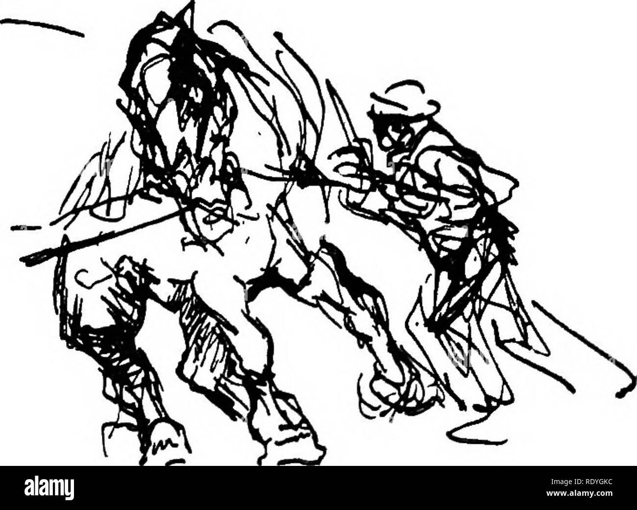 Los Caballos Y El Movimiento Entre Pinturas Y Dibujos Los Caballos