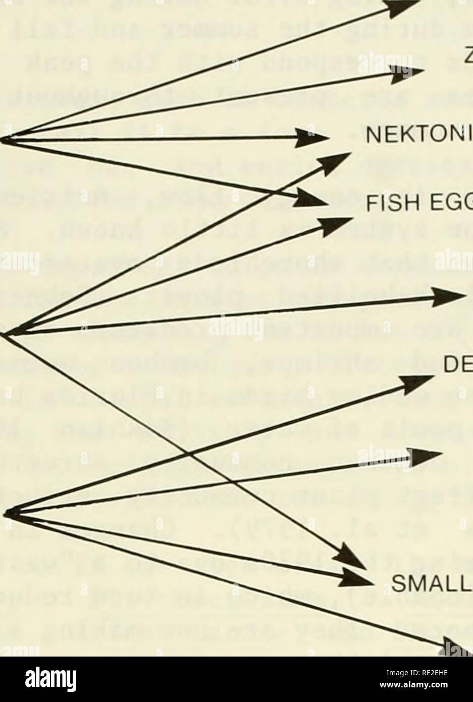 . Una caracterización ecológica de la costa de Maine (norte y este de Cape Elizabeth). Ecología Costera - Maine. Los hábitos de alimentación de recursos alimenticios PLANCTÓNICOS ZOOPLANCTON FITOPLANCTON ^^^ >. NEKTONIC CRUSTÁCEOS HUEVOS Y LARVAS DE PECES grandes peces NEKTONIC DETRITUS, ALGAS POLIQUETOS DEMERSALES Y ^ ^ MOLUSCOS SEMIDEMERSAL pequeños peces, calamares crustáceos Figura 5-25. Los hábitos de alimentación de peces estuarinos. invertebrados y vertebrados de strand line (la zona supratidal donde una comunidad se desarrolla en las macroalgas que lava en tierra). Las aves playeras comen principalmente marisma intermareal invertebrados (es decir, Foto de stock