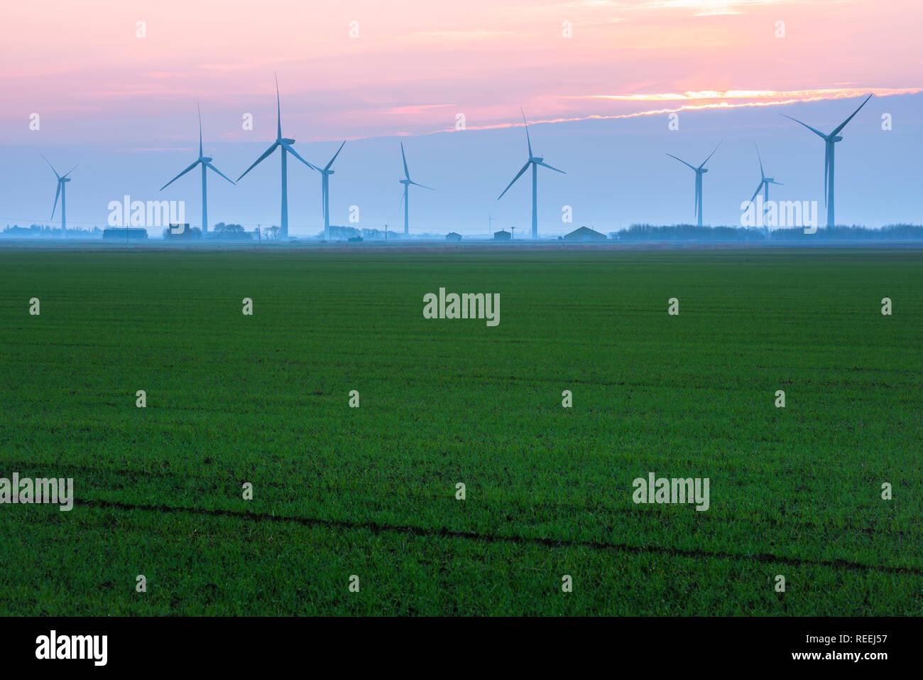 La energía renovable del Reino Unido, vista a través de un fen Cambridgeshire hacia una hilera de aerogeneradores, Inglaterra, Reino Unido. Imagen De Stock