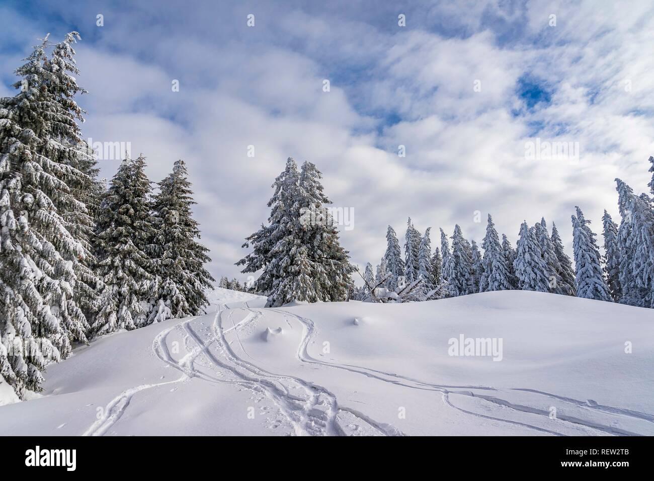 Fantástico paisaje invernal. colorido cielo iluminado por la luz solar. Foto de stock