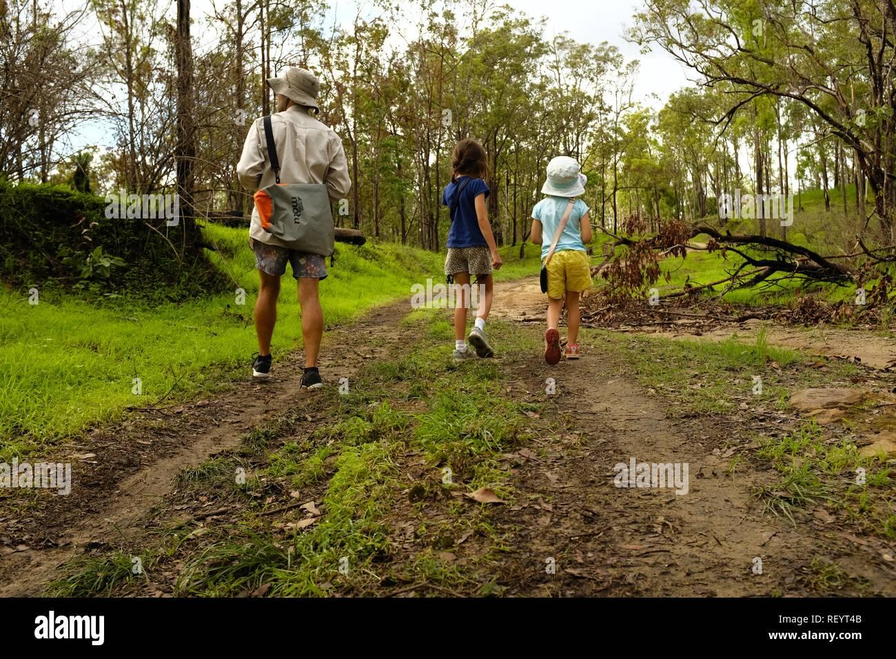 Los niños y el padre caminando junto a una pista de tracción en las cuatro ruedas a través de un bosque, Mia Mia State Forest, Queensland, Australia Foto de stock