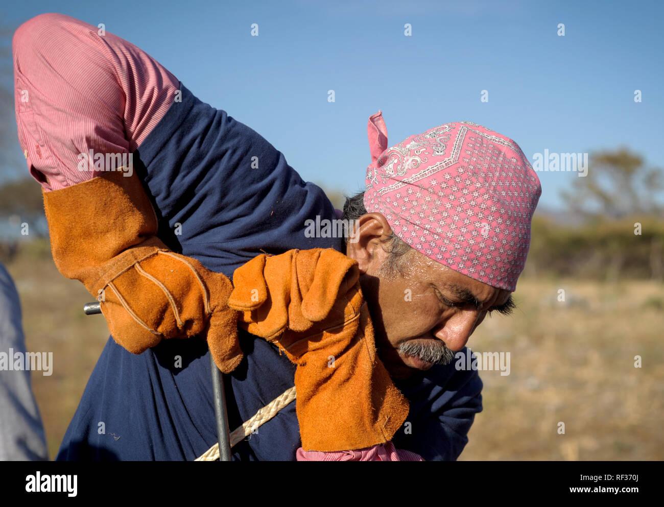 """23 de enero de 2019, México, Huitzuco: Participantes de la 4ª Brigada de Búsqueda Nacional están buscando tumbas ocultas. Más de 40.000 personas están desaparecidas en México. Un grupo de parientes trata sobre sus propias tumbas para encontrar oculto y, por lo tanto, quizá para hacer el duelo es posible para algunas familias. (Dpa """"La búsqueda de la Certeza, sepulcros ocultos en México"""" de 24.01.2019) Foto: Jesús Alvarado/dpa Imagen De Stock"""