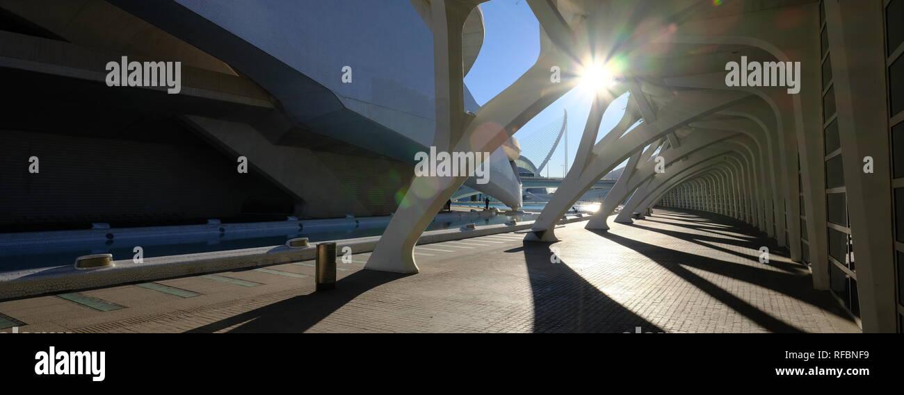 Ciudad de Arte y el Museo de la ciencia por el arquitecto Santiago Calatrava en Valencia España Imagen De Stock