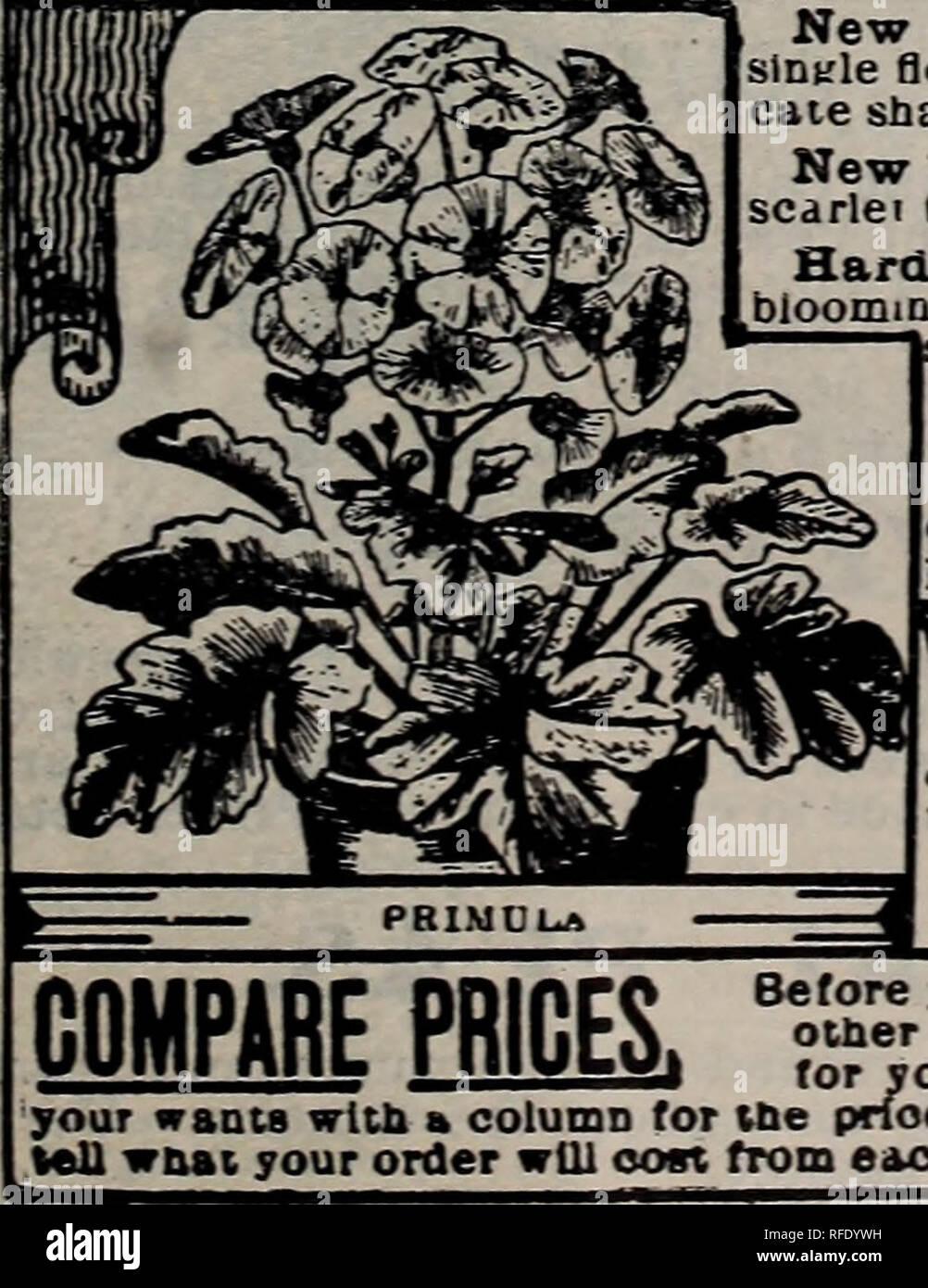 4d2690cb19a0 Catálogo de semillas y de plantas anuales, de 1902. Viveros ...