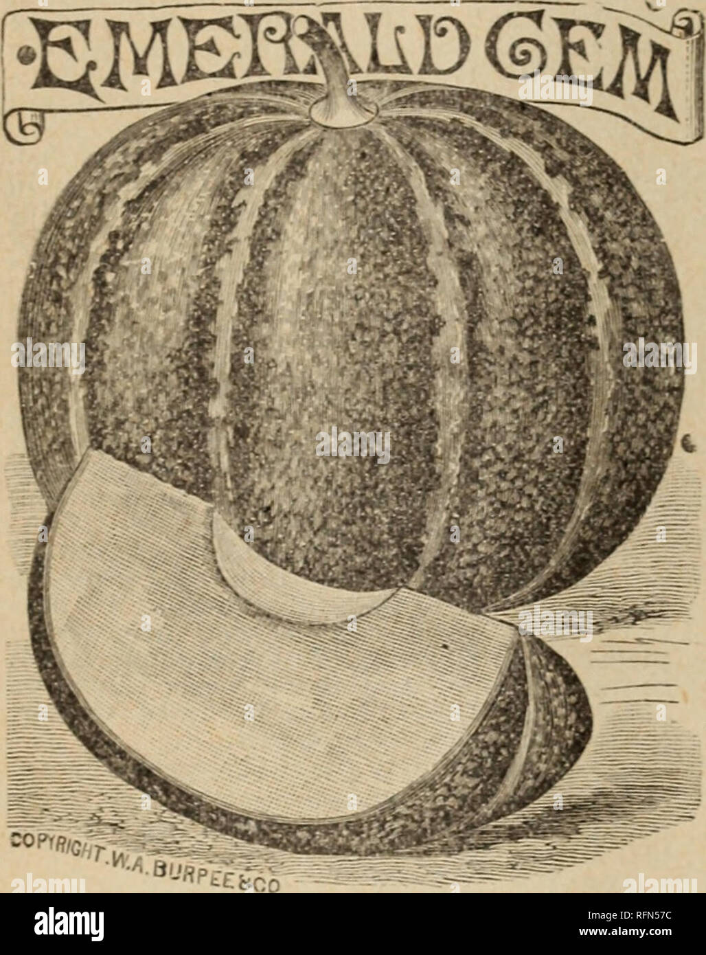 30771f6efd . Retail catálogo de semillas. Viveros Catálogos de Iowa  catálogos de  semillas de hortalizas