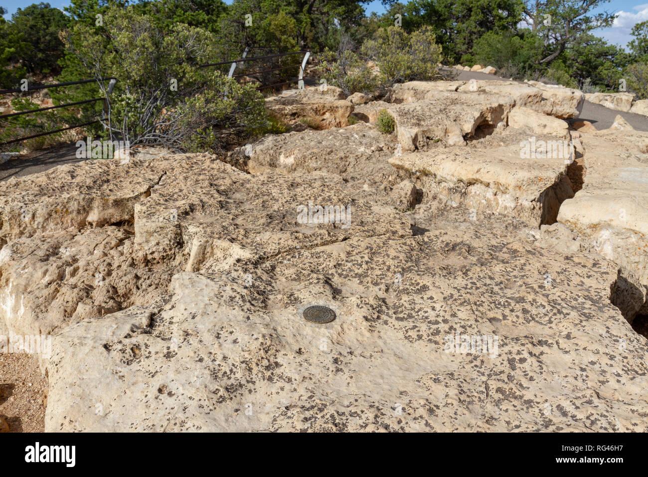 Una US Coast & levantamiento geodésico marca de referencia sobre una roca en el Cabo Royal viewpoint, Grand Canyon North Rim, Arizona, Estados Unidos. Imagen De Stock