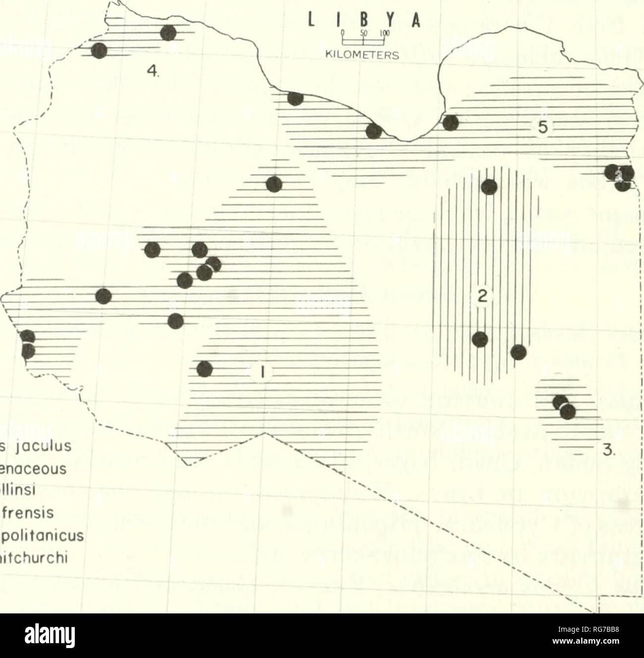 Golfo De Sirte Mapa.Golfo De Sirte Imagenes De Stock Golfo De Sirte Fotos De