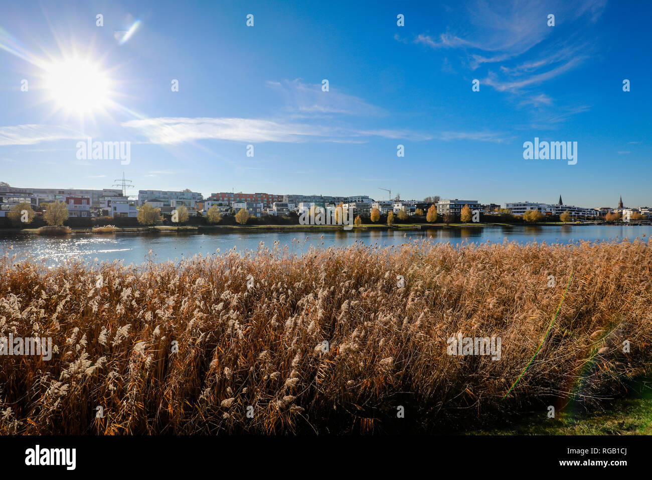 Dortmund, Renania del Norte-Westfalia, área de Ruhr, Alemania - El lago Phoenix, Phoenix Lake es un lago artificial en el sitio de la antigua acería Phoenix-Ost en D Foto de stock