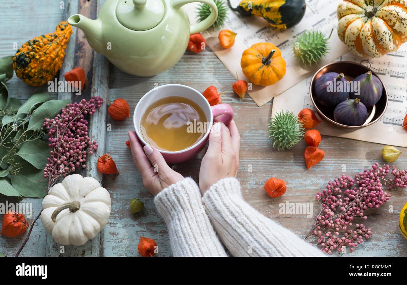 Mujer calentando sus manos en la taza de té en otoño Foto de stock