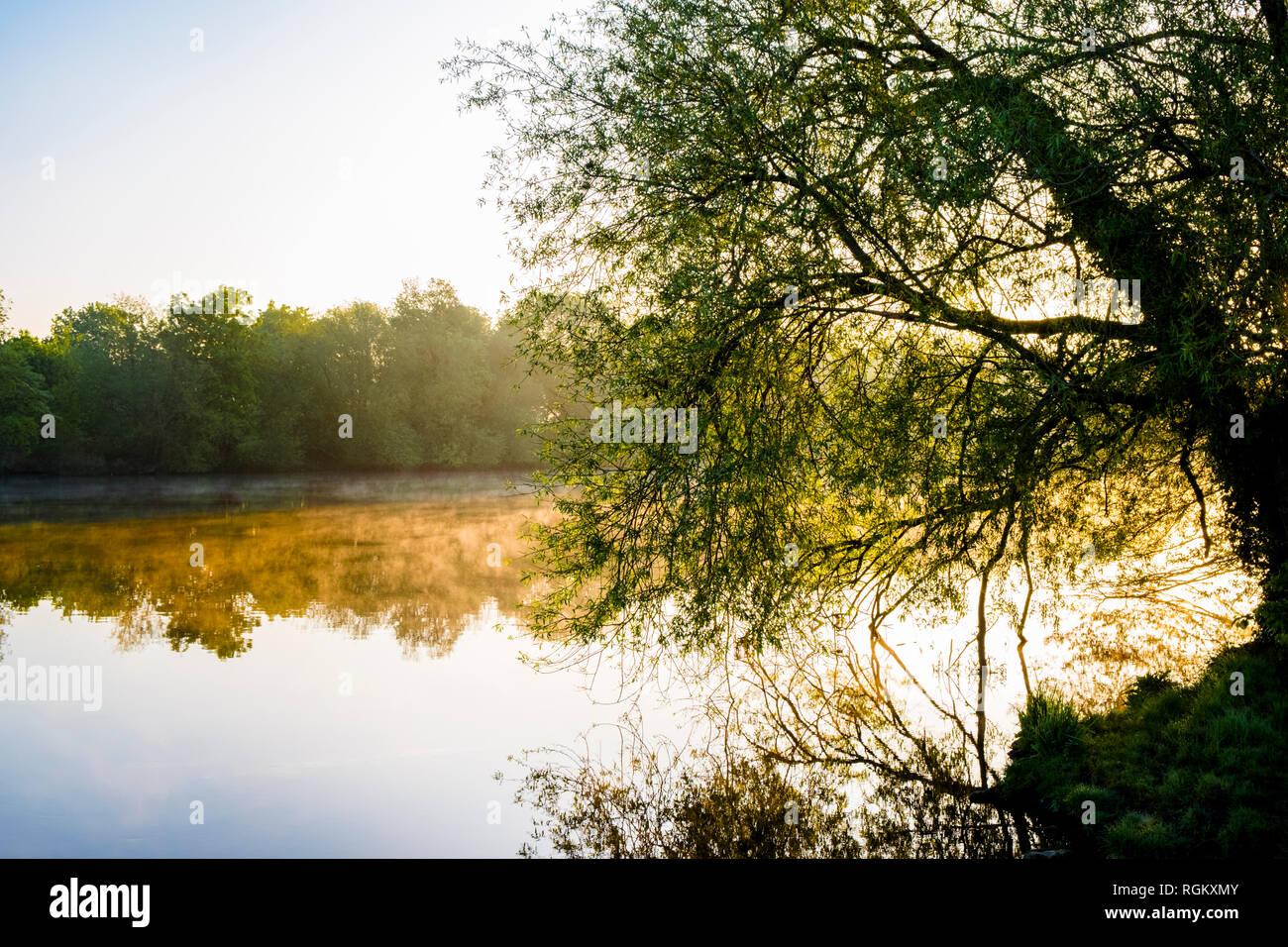 Paisajes Ingleses. La luz del sol por la mañana temprano y la bruma sobre el río Trent en la campiña de Nottinghamshire, Inglaterra, Reino Unido. Imagen De Stock