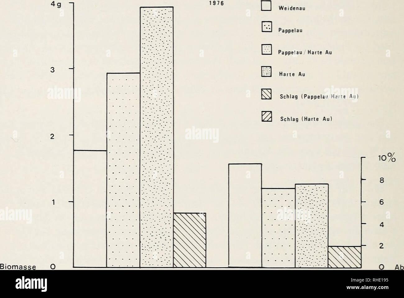 . Bonner zoologische Beiträge :: Zoologisches Herausgeber und Forschungsinstitut Museo Koenig de Bonn. La biología, zoología. 206 M. Pintar Bonn, Zool. Beitr. unter anderem für die gesamte Anurenfauna dieses Gebietes geltende, Beein- trächtigung durch den Kraftwerksbau besonders für den Moorfrosch (totale Zerstörung der Anfangsgesellschaften) eine starke Gefährdung dar (Pintar &Amp; STRAKA 1981). 2g 1 Biomasse O W777R 10% - 8 6 4 2 O Ab Abb. 9: Vergleich von Biomasseabundanz en Gramm pro Falleneinheit (enlaces) und indivi- duenabundanz (Bufo bufo) von rechts in den einzelnen Lebensräumen. Imagen De Stock