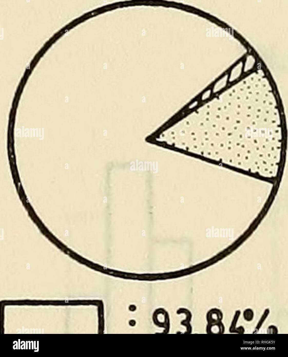 . Boletin de la Sociedad de Biología de Concepción. Sociedad de Biología de Concepción; Biología; y la biología. OTOÑO INVIERNO 78,92% 21,05%. PRIMAVERA , ' 93,84% 0,34% DIATOMEAS ^ : 5,90% r>?^ : 5,80% ZOOPLANCTON r////////////l 3 DINOFLAGELADOS RUIDO Figura 3.- Frecuencia porcentual de los principales grupos de presas, por grupos de tallas y estaciones^. Por favor tenga en cuenta que estas imágenes son extraídas de la página escaneada imágenes que podrían haber sido mejoradas digitalmente para mejorar la legibilidad, la coloración y el aspecto de estas ilustraciones pueden no parecerse perfectamente a la obra original. Sociedad de Biología de Foto de stock