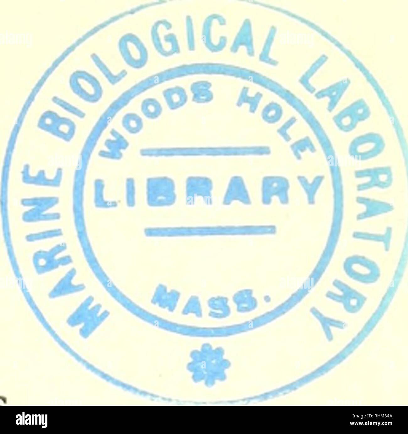 Estructura Y Función Biológica Procedimiento La Bioquímica