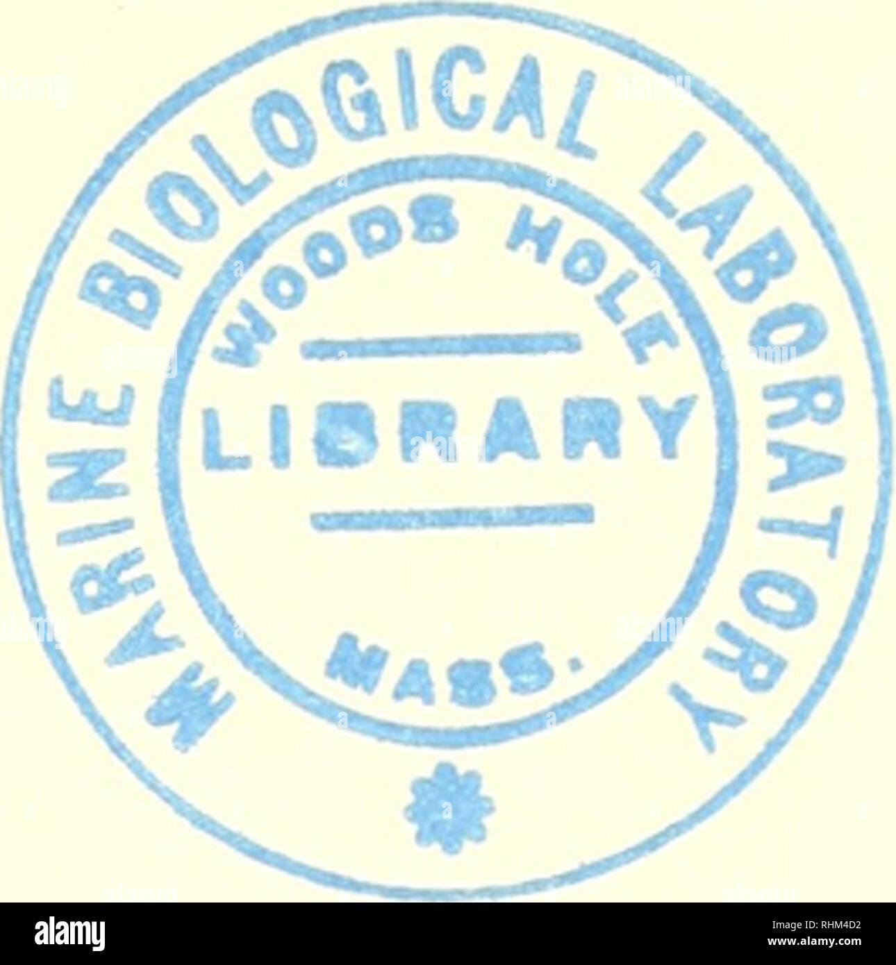 Orden Biológico La Biología Contenido I Introducción A