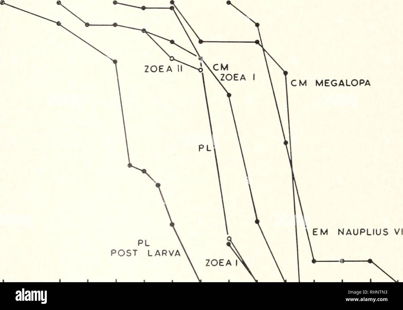 . El boletín biológica. La Biología, Zoología; biología; biología marina. 112 JOAN LANCE TABLI II .SV;//w//v tolerancias de cirros fiedes y decápodos Spei ies M.iUC mala vida-historia Experimental de temperatura (°< rango de salinidades, causando mortalidad (% de agua de mar) Rango de salinidades letal (%) de agua de mar Elminius modestus nauplius Fase I 16.2 0-35 0-30 Cuidado en nosotros maenas Etapa 1 KM /I Megalopa 17.0 17.0 0-90 0-45 0-35 0-27,5 Porcellana longicornis zoea fase I Fase 1 1 post-larva zoea 17.0 17.0 17.0 0-65 0-65 0-70 0-40 0-40 0-57,5 ent, sin embargo, si la supervivencia después de 20 horas es evaluado (Fig. 2). W Foto de stock