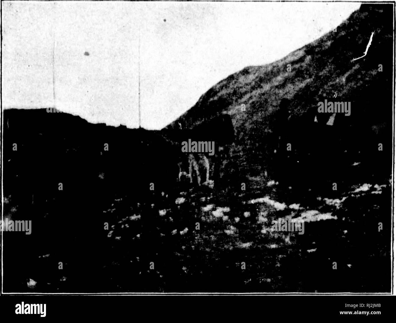 """. Hacia el norte a lo largo de los """"grandes"""" de hielo [microforma] : una narrativa de vida y de trabajo a lo largo de la costa y en el interior de la capa de hielo en el norte de Groenlandia en los años 1886 y 1891-1897 : con una descripción de la pequeña tribu de Smith-Sound esquimales, la más septentrional de seres humanos en el mundo, y una cuenta del descubrimiento y traer a casa de la """" gran Cape-York Saviksue"""" o meteoritos. Expediciones Científicas;-Expeditions scientifiques. 2S8 hacia el norte a lo largo de los """"grandes"""" de hielo encontrado cachi.'s, y witlioiit liavin^i^ llegado más lejos que la primera alcoliol* o caché. T Foto de stock"""
