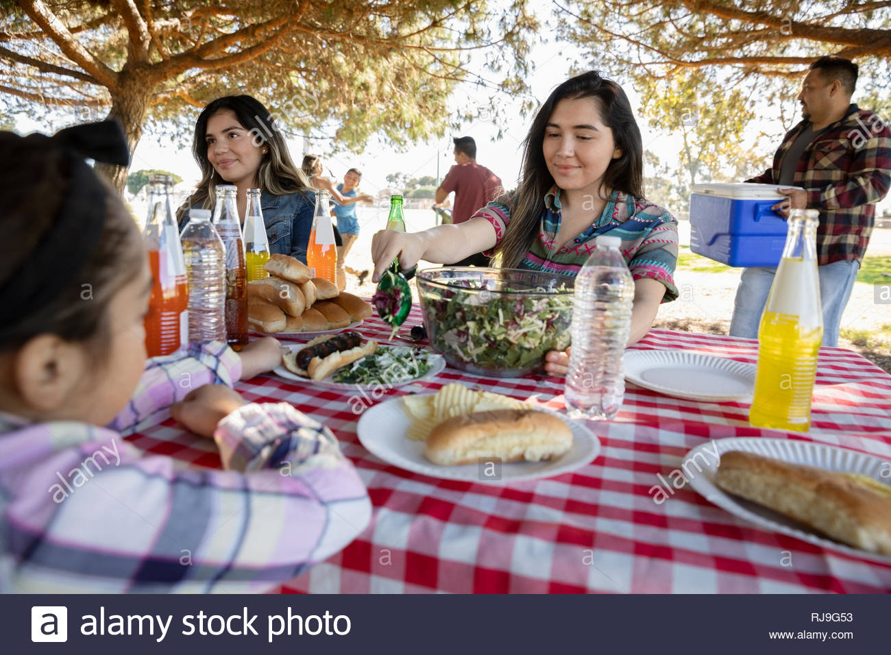 Familia Latinx disfrutando un almuerzo de barbacoa en el parque Imagen De Stock