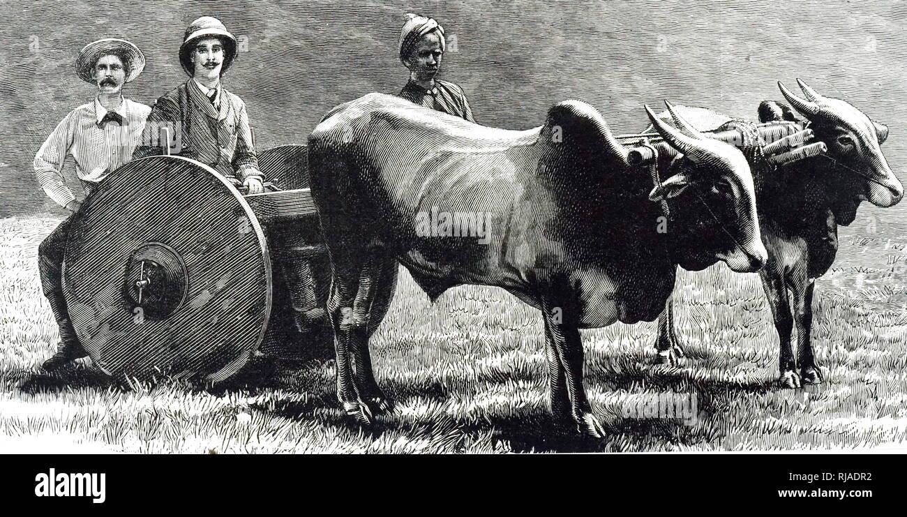 Un grabado representando una rueda sólida jungle vagón tirado por bueyes, Mysore, India. Fecha del siglo XIX Imagen De Stock