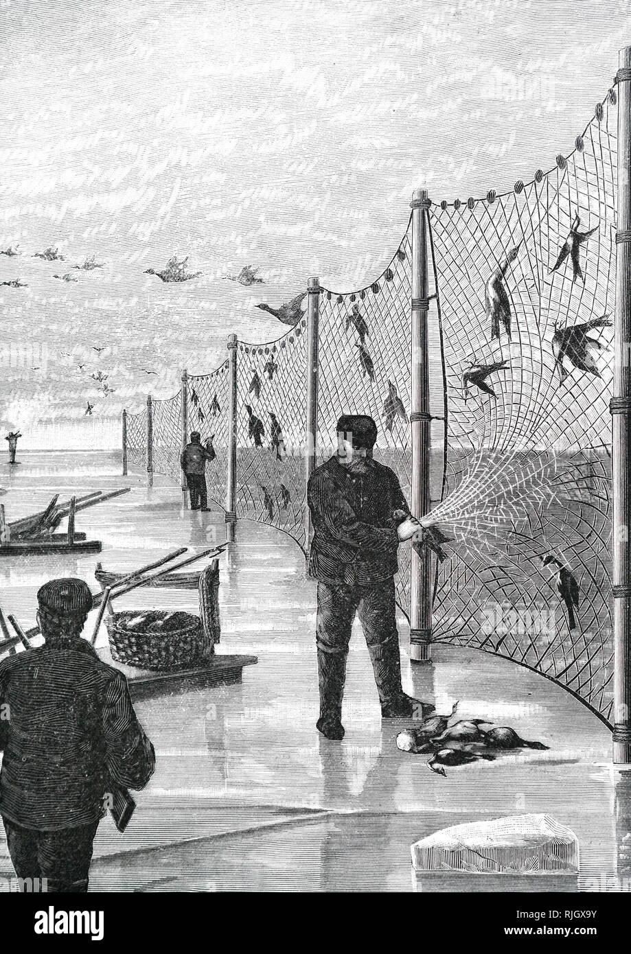 Un Grabado Representando A Los Pescadores La Compensación De Aves
