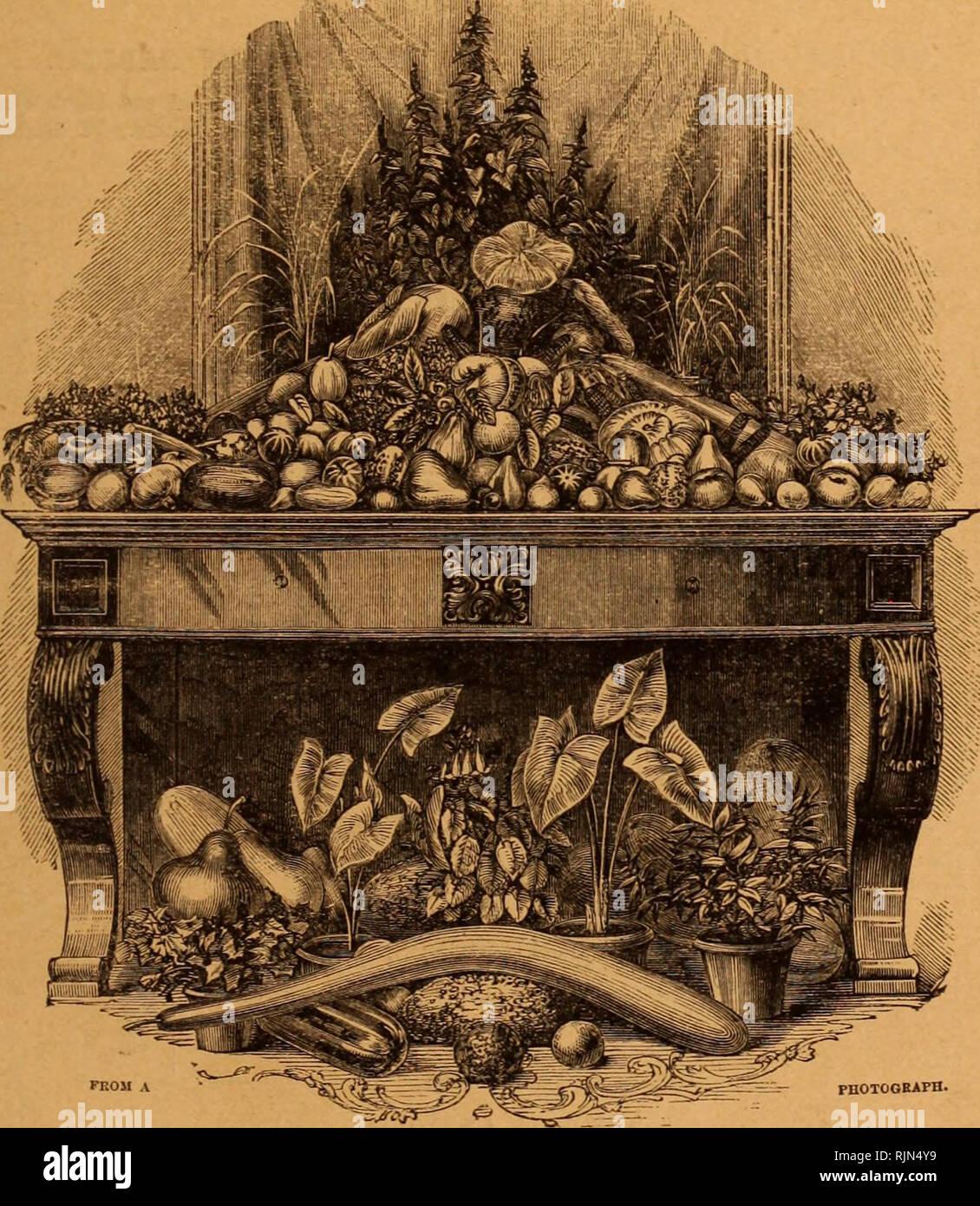 . Barr &Amp; Sugden de primavera del catálogo de semillas y guía de la flor y huerta / Barr &Amp; Sugden. Catálogo de vivero. FIEST EDITION quince mil. BARR &Amp; SUGDEN, Guía para el jardín de flores, &ruoTOOEArn c... &Amp; STJGDEN BARR, comerciantes de semillas y floristas, 12 King Street, Covent Garden, Londres, W.C. (Enfrente del Garrick Club). Precio de la mitad-A-Corona. Actuaciones inmediatas en Cancillería será taien contra todas las infracciones de los derechos de autor de esta obra, el derecho de traducción, reservado. Por favor tenga en cuenta que estas imágenes son extraídas de la página escaneada imágenes que pueden haber sido dig Foto de stock