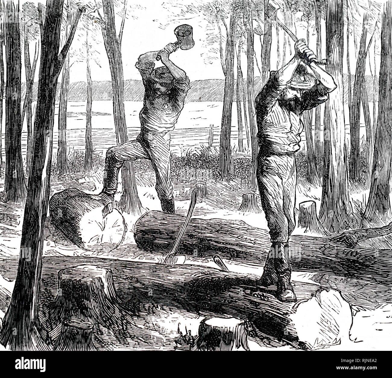 Un grabado que representa la división de árboles en raíles para esgrima. En Ontario, Canadá. Imagen De Stock