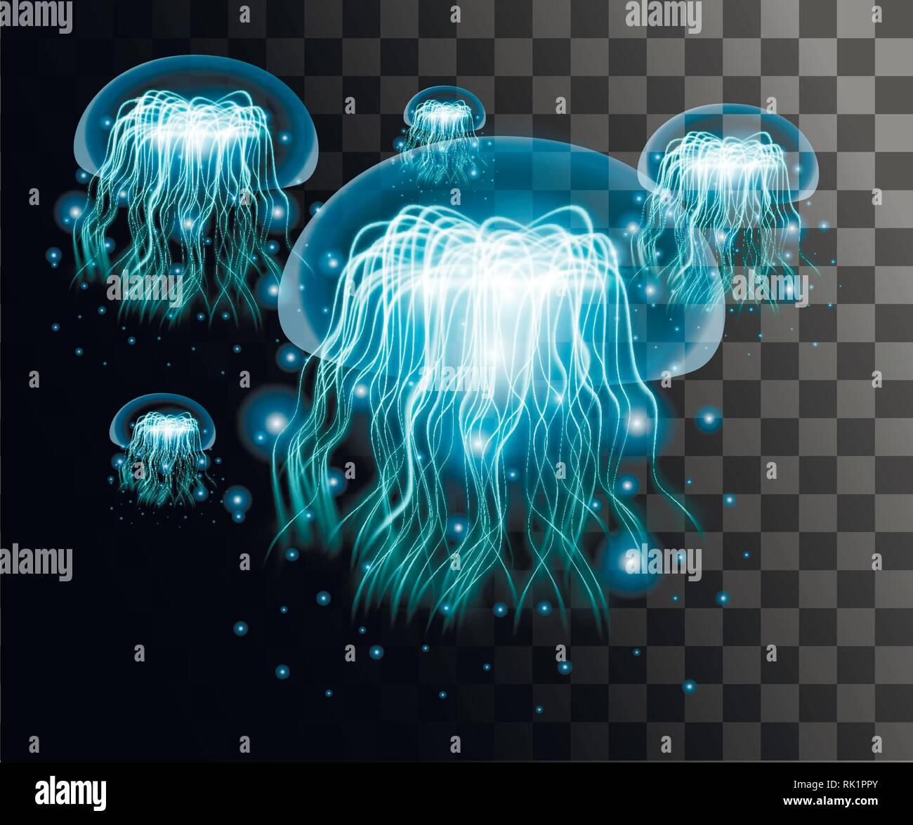 Medusa azul transparente sobre fondo transparente. Estilo de efecto de las medusas. Abstract efecto radiante ilustración. Ilustración del Vector
